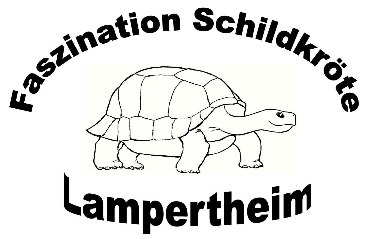 Faszination Schildkröte